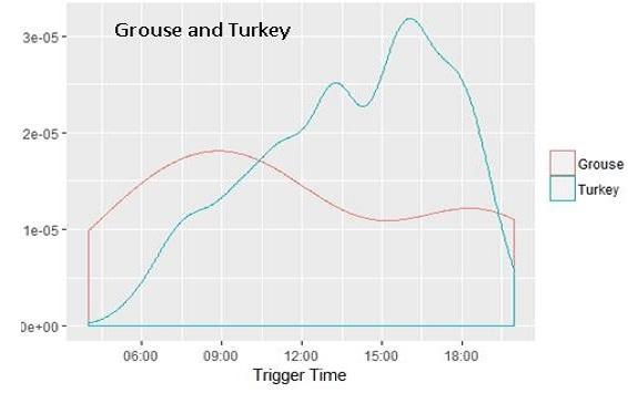 grouse_turkey