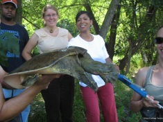 Milwaukee community members participate in reptile monitoring with the Urban Ecology Center