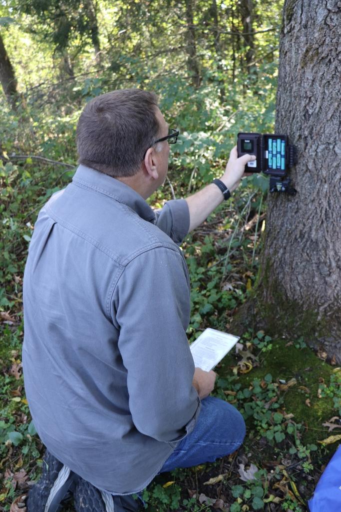 A volunteer checking his trail camera